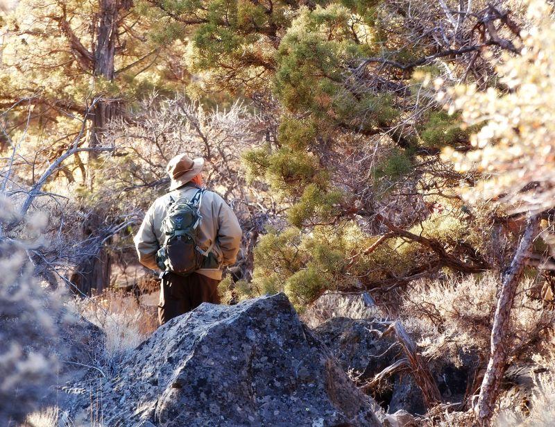 sports-man-hiking-1013tm-pic-1596.jpg